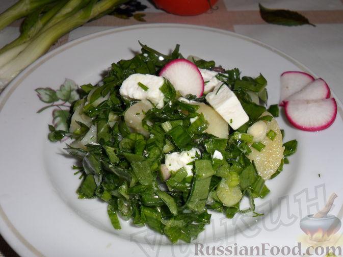 Рецепт Салат из зеленого лука, щавеля и брынзы