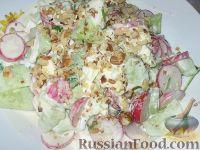 Фото к рецепту: Салат с орехами и редиской