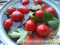Фото к рецепту: Соленые помидоры с горчицей (старинный рецепт)
