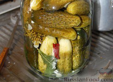 Лучших рецептов огурцов на зиму | Just Cook