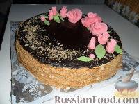 Фото к рецепту: Торт Рыжик-Медовик