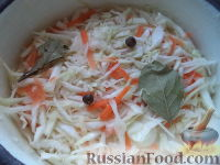 Фото к рецепту: Малосольная квашеная капуста