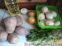 Фото приготовления рецепта: Картофель отварной с грибами - шаг №1