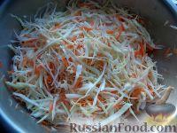 Фото приготовления рецепта: Белокочанная капуста квашеная - шаг №4