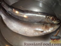 Фото приготовления рецепта: Маринованная сельдь - шаг №2