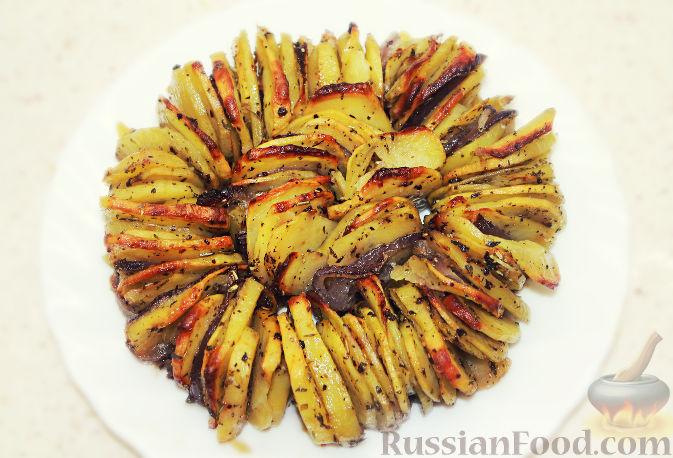 Как запекать картошку в духовке фото и рецептами