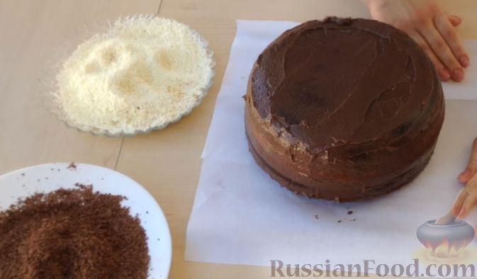 Основа торта зебра фото 5