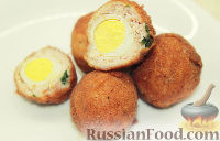 Фото к рецепту: Яйца по-шотландски