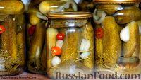 Фото к рецепту: Соленые огурчики на зиму