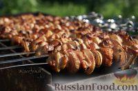 Фото к рецепту: Шашлык из курицы в грейпфруте