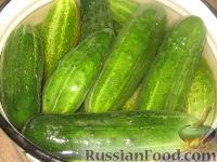 Фото приготовления рецепта: Огурцы в остром томатном соусе - шаг №2