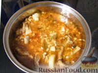 Фото приготовления рецепта: Заправка для солянок и рассольников - шаг №7