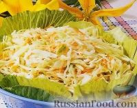 Фото к рецепту: Салат из капусты с морковью