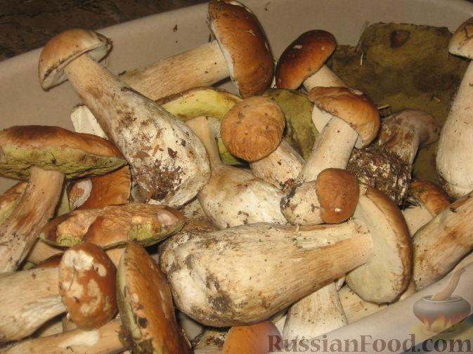 как замариновать благородные грибы