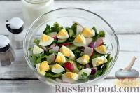 Фото приготовления рецепта: Весенний салат с редисом, огурцами и яйцами - шаг №5