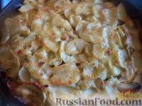 Фото к рецепту: Запеканка из картофеля и шампиньонов, со сливками