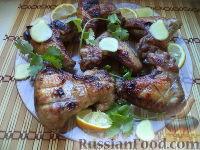 Фото к рецепту: Куриные крылышки, жаренные на решетке