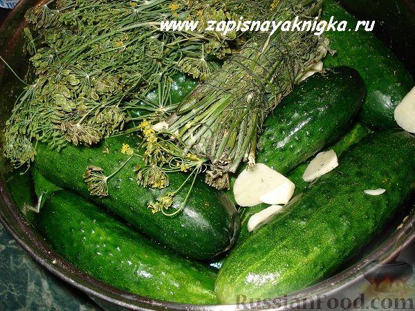 Рецепт Огурцы с горчицей на зиму