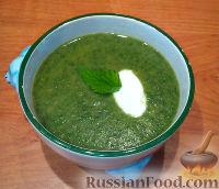 Фото к рецепту: Суп-пюре из крапивы