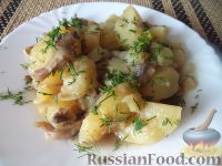 Фото к рецепту: Картофель, тушенный с грибами
