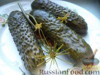 Фото к рецепту: Малосольные огурчики (на минеральной воде)