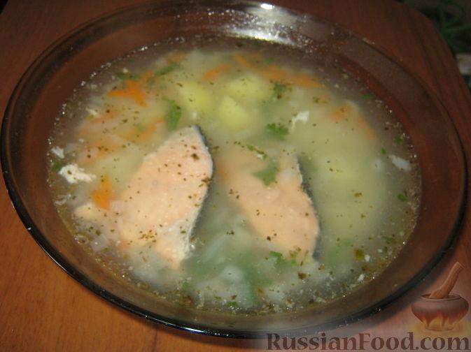 Суп из семги фото рецепты с фото