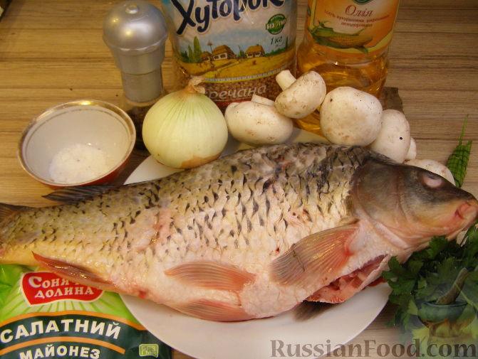 сазан в духовке с грибами рецепты
