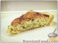Фото к рецепту: Сырный пирог с зеленью