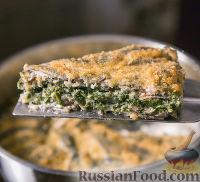 Фото к рецепту: Рыбная запеканка с сыром и шпинатом