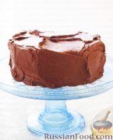 Фото к рецепту: Воздушный торт с шоколадным кремом