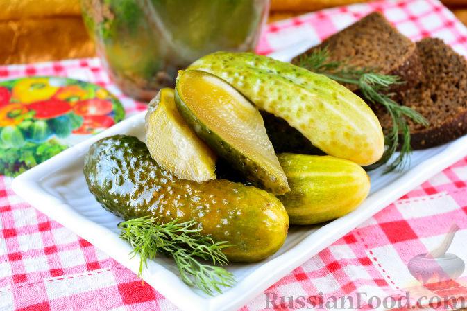 Фото к рецепту: Огурцы, засоленные с ржаным хлебом