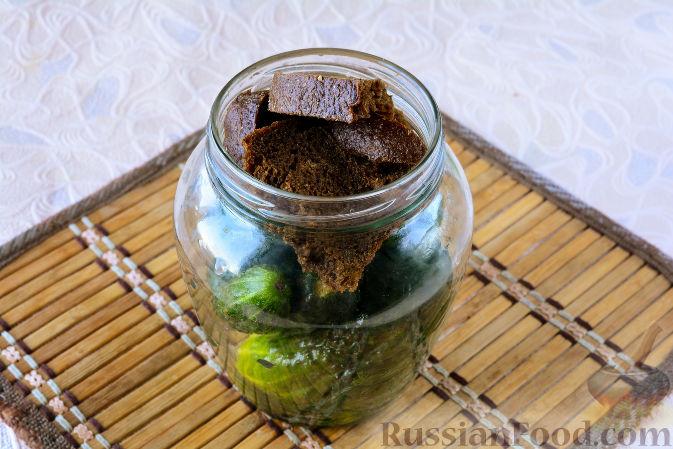 Фото приготовления рецепта: Огурцы, засоленные с ржаным хлебом - шаг №7