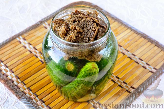 Фото приготовления рецепта: Огурцы, засоленные с ржаным хлебом - шаг №8