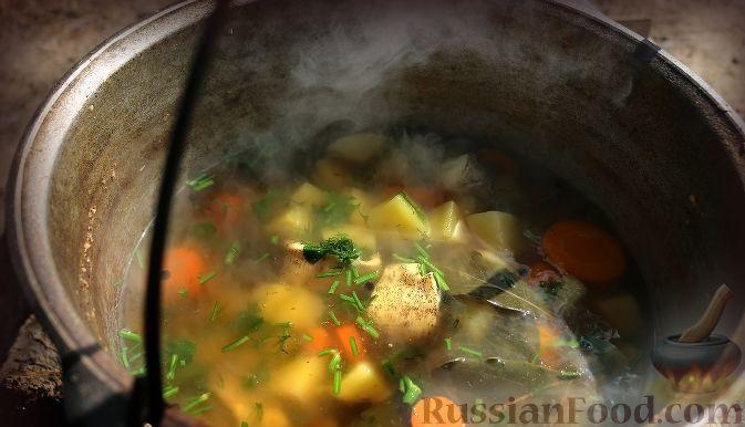 Фото приготовления рецепта: Луссекатт (шведские шафрановые булочки) - шаг №16
