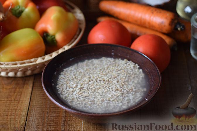 Фото приготовления рецепта: Овощной салат с перловкой на зиму - шаг №2