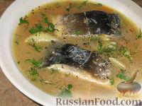 Фото к рецепту: Суп из карпа