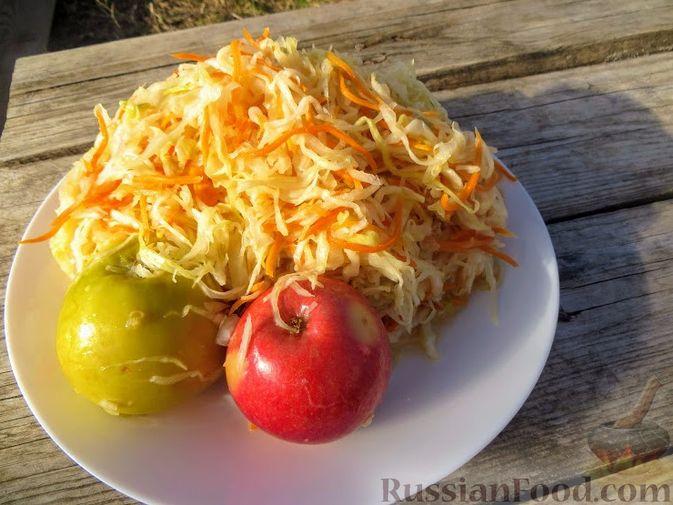"""Фото к рецепту: Квашеная капуста """"От тестя"""" (мочёные яблоки в капусте)"""
