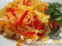 Фото к рецепту: Салат из капусты «Закусон»