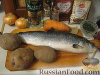 Фото приготовления рецепта: Уха из лососевых голов - шаг №1