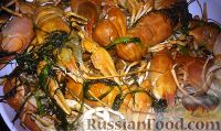 Фото к рецепту: Раки, варенные в пиве