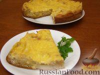Фото к рецепту: Быстрый пирог с капустой