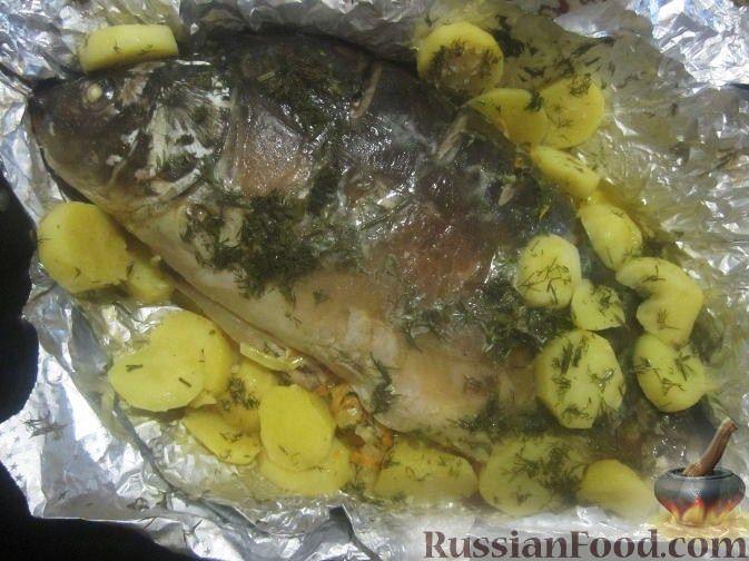 карп в сметане запеченный в духовке рецепты приготовления