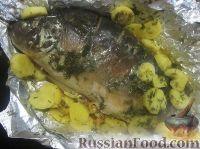 Фото к рецепту: Карп в сметане с овощами, запеченный в духовке