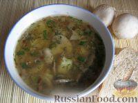 Фото к рецепту: Простой  грибной суп из шампиньонов