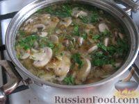 Фото приготовления рецепта: Простой  грибной суп из шампиньонов - шаг №12
