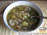 Фото приготовления рецепта: Простой  грибной суп из шампиньонов - шаг №13
