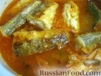 Фото к рецепту: Хек, тушенный в томатном соусе