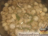 Фото приготовления рецепта: Шампиньоны маринованные вкуснейшие - шаг №5