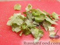 Фото приготовления рецепта: Салат из яблок с грецкими орехами - шаг №3