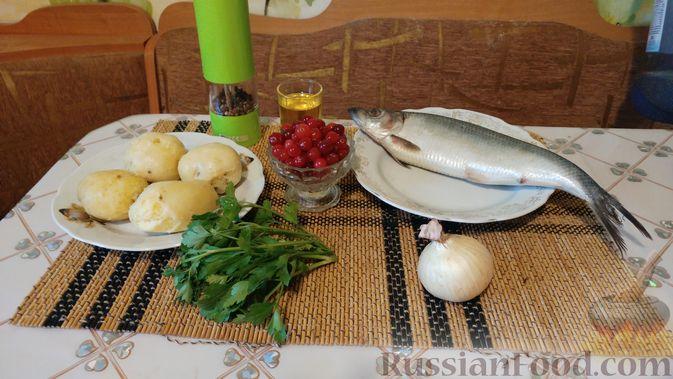 Фото приготовления рецепта: Закусочный салат с селёдкой, картофелем и клюквой - шаг №1